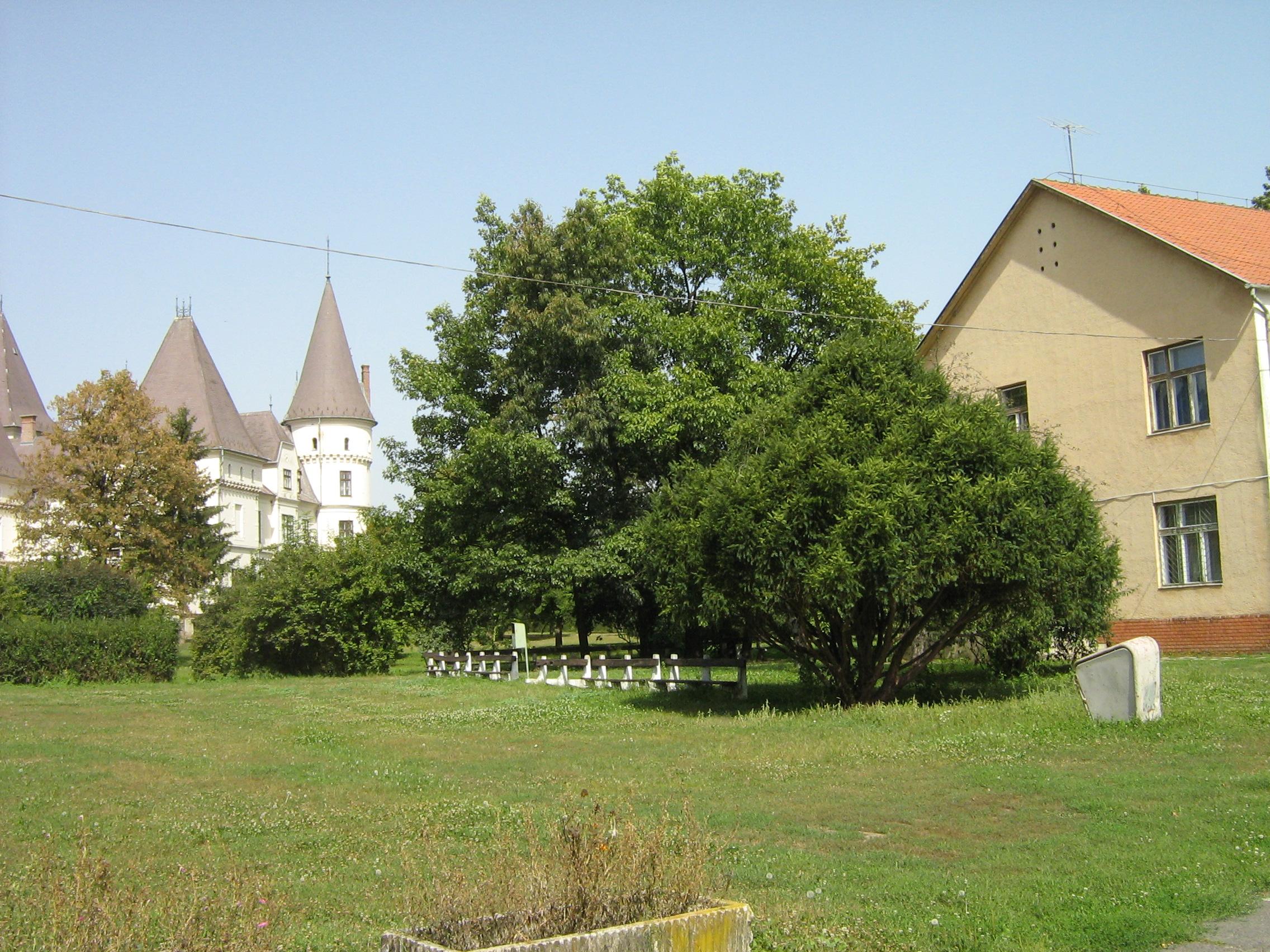 A gyermekotthon egyik épülete a kastéllyal (a szerző fotója)